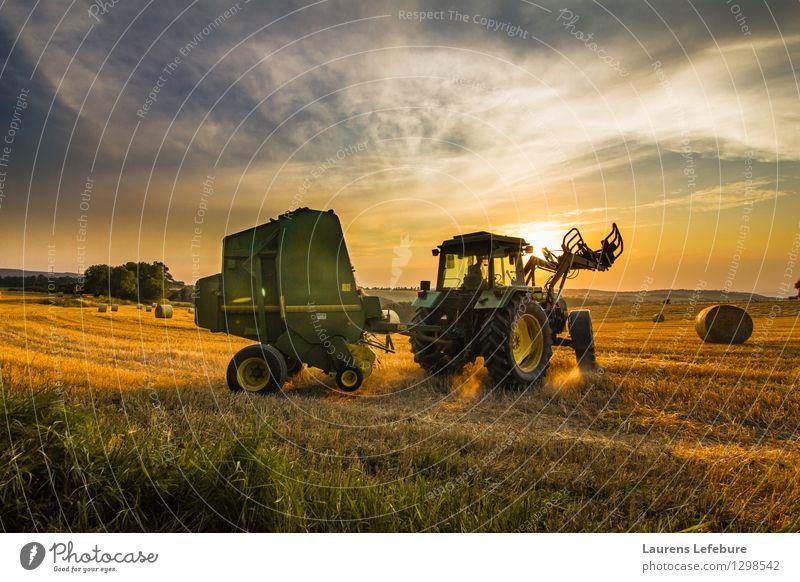 Landwirt Heu ernten Ernte Heuballen Bauernhof Landwirtschaft Forstwirtschaft Traktor 1 Mensch 45-60 Jahre Erwachsene Landschaft Nutzpflanze Business Erfahrung