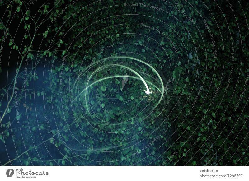 Vollmond Abend Nacht dunkel Blatt Birke Blitzlichtaufnahme Mond Stern Langzeitbelichtung Leuchtspur Drehung Verwirbelung Kritzelei Bewusstseinsstörung