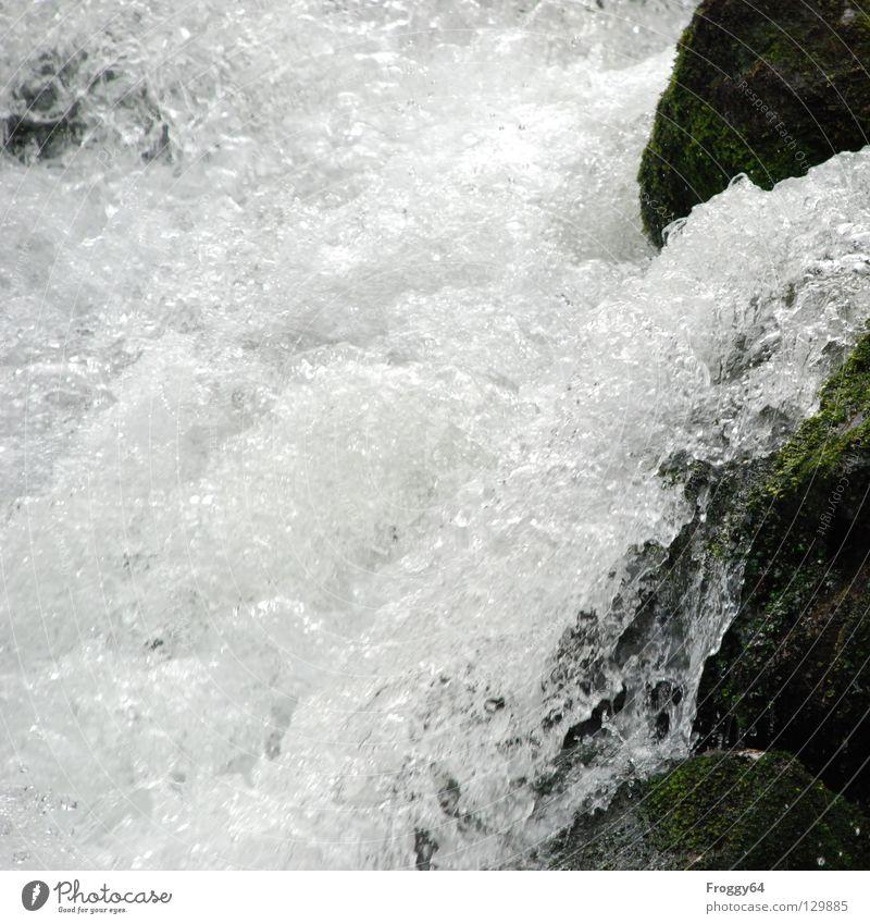 Wildwasserfall Wasser weiß schwarz Berge u. Gebirge Stein Luft Felsen Wassertropfen Fluss Bach Luftblase spritzen Wildbach