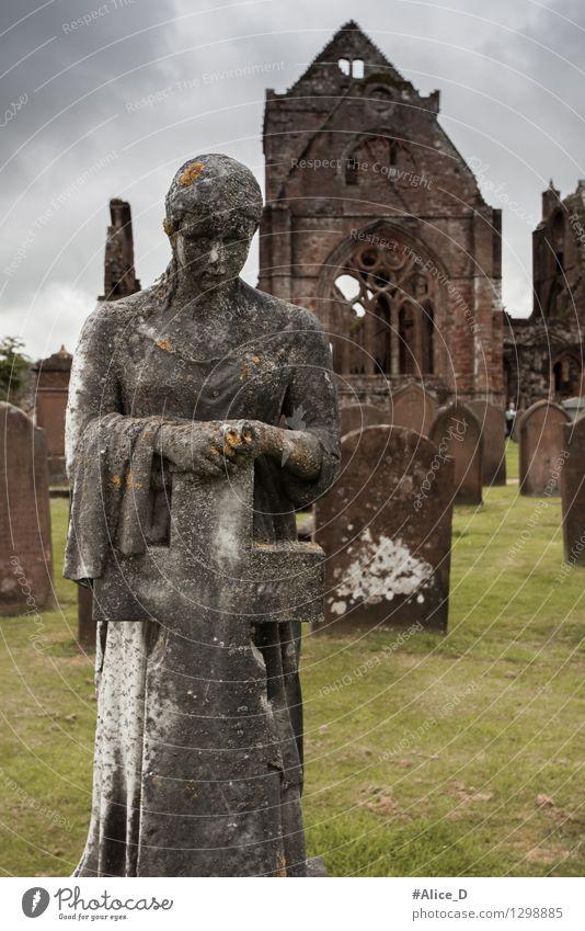 Sweetheart Abbey Friedhof Kunstwerk Skulptur Architektur Kultur New abbey Dumfries schottland Europa Kirche Ruine Park Bauwerk Fenster Sehenswürdigkeit Kreuz