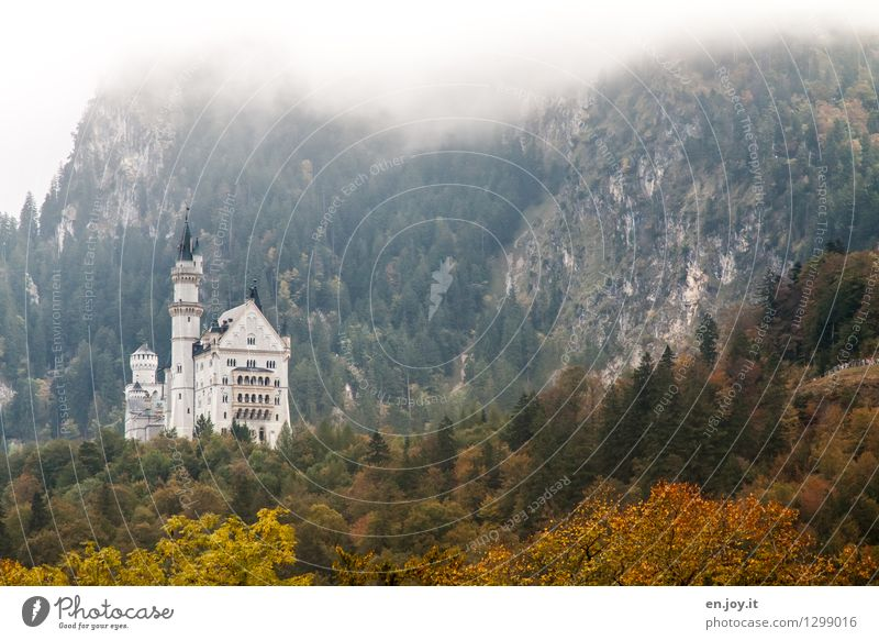Fernblick Natur Ferien & Urlaub & Reisen Landschaft Ferne Wald Berge u. Gebirge Herbst Gebäude Deutschland Tourismus Nebel Ausflug Klima Turm Hügel Alpen