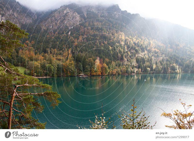Spot an Natur Ferien & Urlaub & Reisen Landschaft ruhig Wald Berge u. Gebirge Herbst See Tourismus Wetter leuchten Nebel Idylle Ausflug Klima Lebensfreude