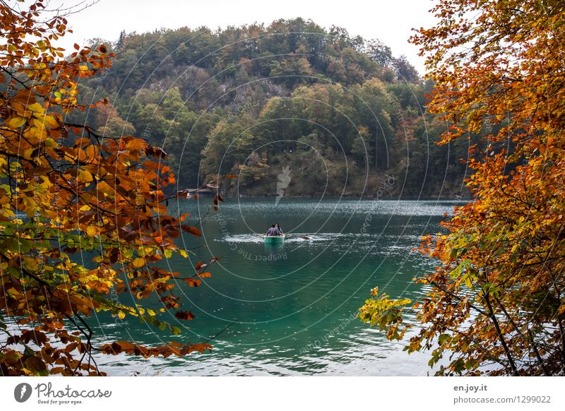 urlauben Freizeit & Hobby Ferien & Urlaub & Reisen Tourismus Ausflug 3 Mensch Landschaft Herbst Laubbaum Herbstlaub Herbstwald Blatt Zweige u. Äste Wald Hügel