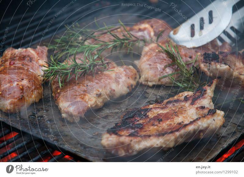 nix für veggies Lebensmittel Fleisch Kräuter & Gewürze Steak Schweinefleisch Ernährung Grillzange Grillrost Grillkohle Lifestyle Gesunde Ernährung Grillen