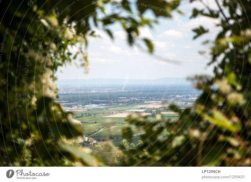 Vignette Natur Sommer Landschaft Feld wandern Sträucher Aussicht beobachten entdecken Dorf durchsichtig Loch Baden-Württemberg