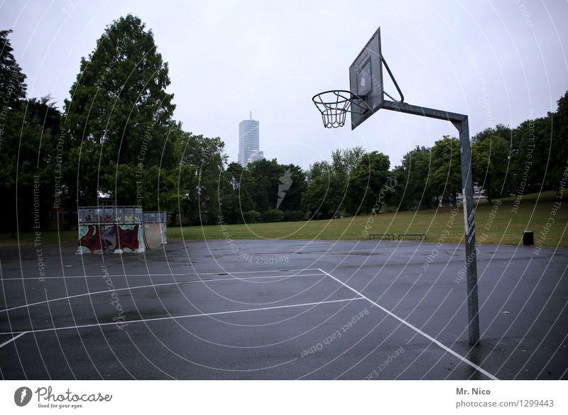 körbchengröße Q sportlich Fitness Freizeit & Hobby Sport Ballsport Sportstätten Halfpipe Baum Wiese Stadt Park grau Basketball Basketballkorb Basketballplatz