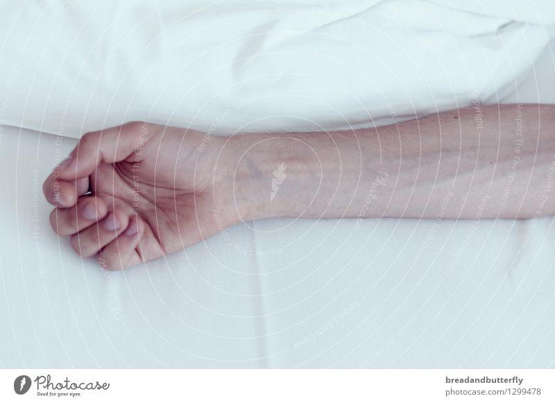 the softest touch Mensch maskulin Junger Mann Jugendliche Erwachsene Arme Hand 1 18-30 Jahre 30-45 Jahre Erholung liegen warten authentisch einfach kalt nah