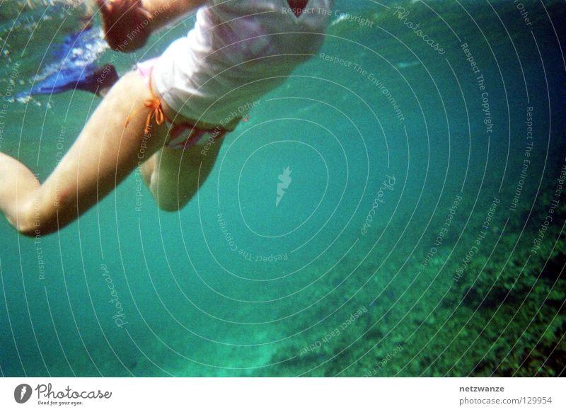 like a sea turtle Unterwasseraufnahme Wassersport Afrika Schnorcheln Scan Seychellen Nixe