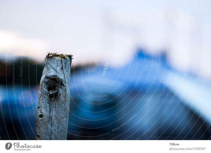 Augen(blick) Holz blau Farbe Pfosten Abenddämmerung Farbfoto Außenaufnahme Menschenleer Textfreiraum rechts Dämmerung Low Key Unschärfe Schwache Tiefenschärfe