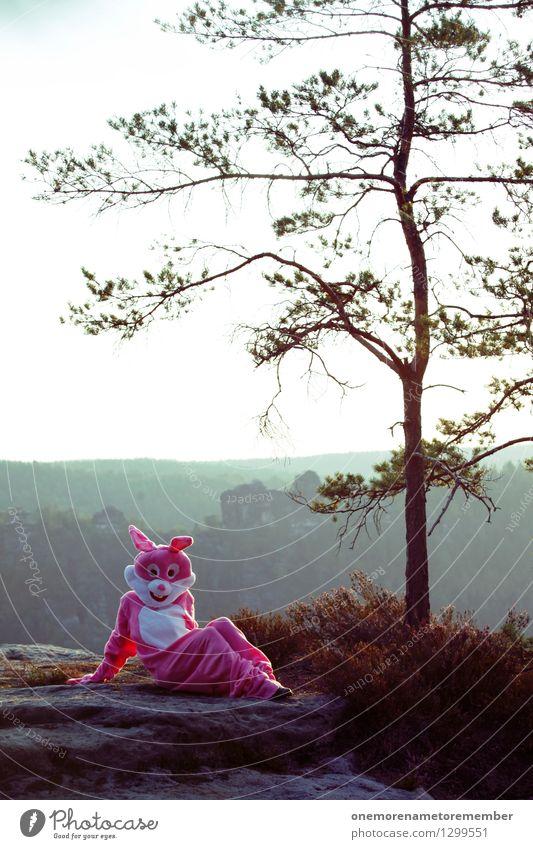 Hase mit Höhenangst Natur schön Erotik Freude Wald Kunst Felsen rosa ästhetisch verrückt Körperhaltung Umweltschutz Surrealismus Hase & Kaninchen Kostüm