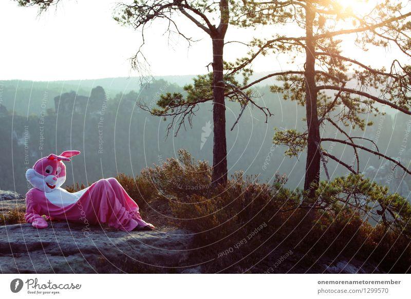 Chillin' Bun II Sonne Freude Wald Kunst Felsen rosa ästhetisch verrückt Abenteuer Sonnenbad Hase & Kaninchen Kunstwerk Karnevalskostüm Sächsische Schweiz