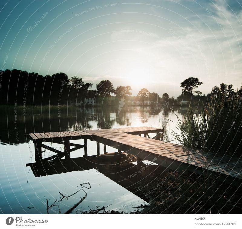 Verborgen Himmel Natur Pflanze Wasser Baum Landschaft ruhig Ferne Umwelt Holz See Stimmung Horizont glänzend Wetter leuchten