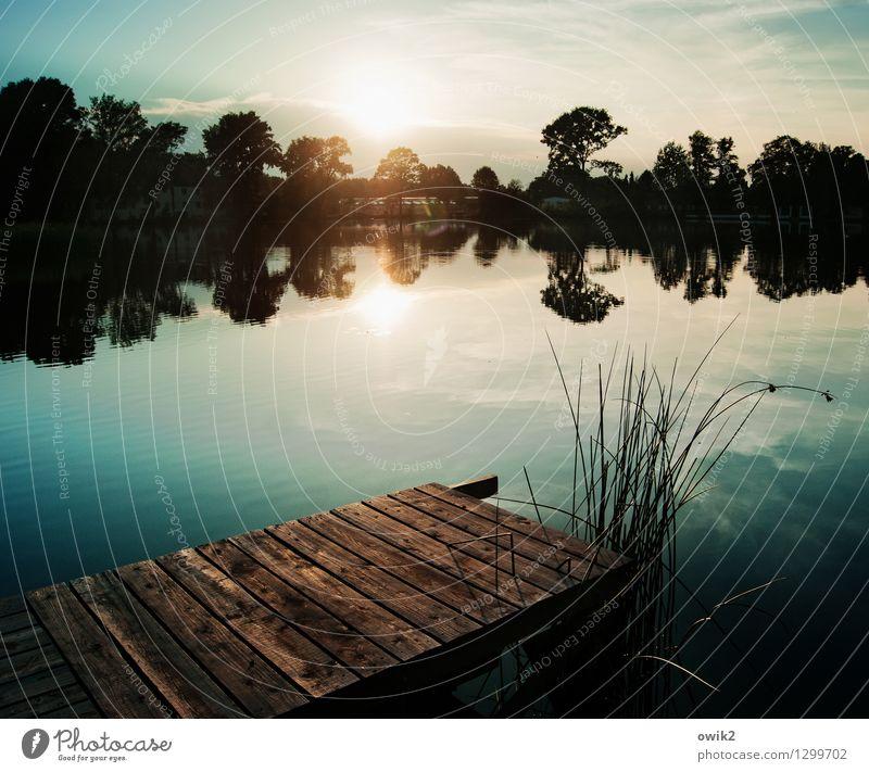Verschwiegen Himmel Natur Pflanze Wasser Baum Landschaft ruhig Wolken Ferne Umwelt Gefühle Holz See Horizont glänzend Wetter
