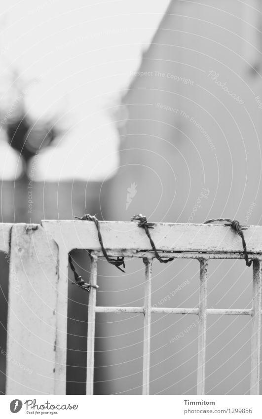 Stadtsplitter. Wohnung Haus Mauer Wand Tür Gitter Stacheldraht Metall dunkel grau schwarz Schwarzweißfoto Angst Außenaufnahme Menschenleer Tag