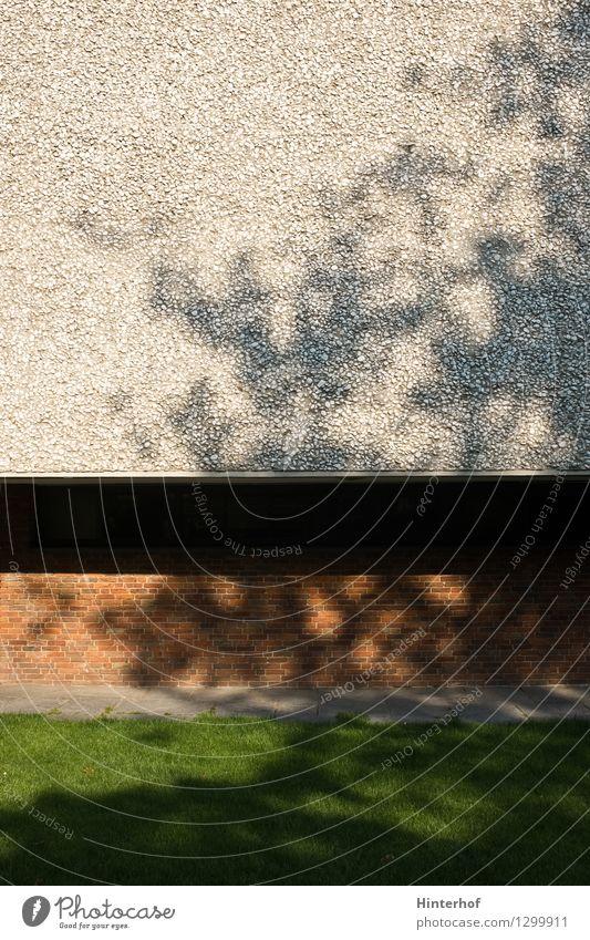 Baumschatten auf Fassade Stadt Menschenleer Gebäude Architektur Mauer Wand Stein Beton ästhetisch hell modern braun grau grün Idylle Inspiration abstrakt