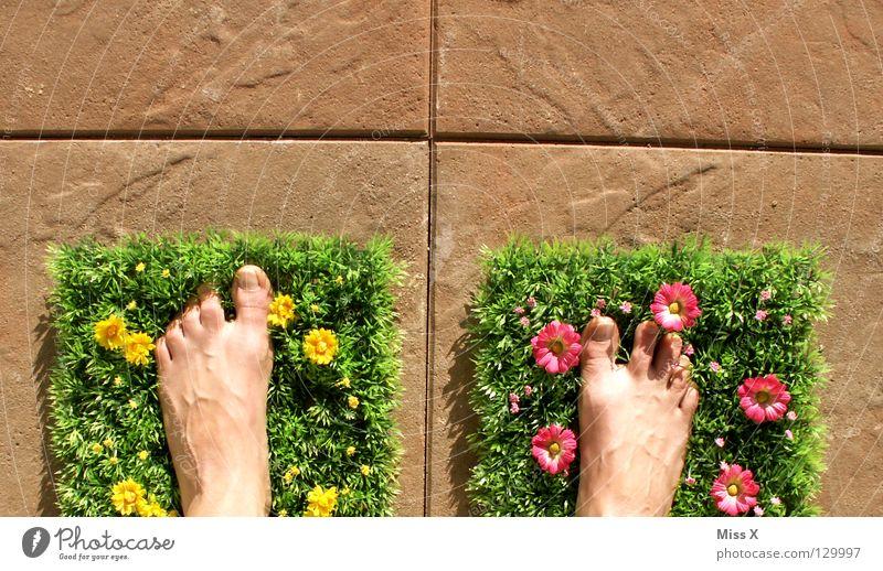 Urlaub auf Balkonien Blume Sommer Ferien & Urlaub & Reisen Wiese Gras Frühling Garten Stein Fuß Wohnung Rasen Fliesen u. Kacheln Kunststoff Terrasse Blumenwiese