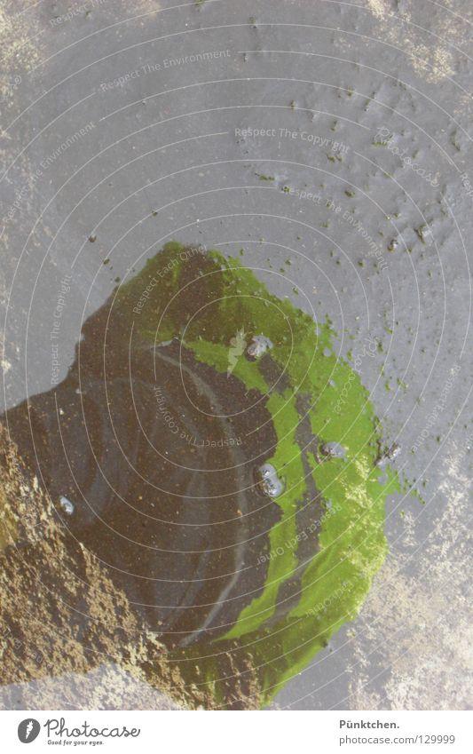 Inscheniör Asphalt Reflexion & Spiegelung Baustelle Bauarbeiter Ingenieur retten Hose Jacke Weste Pfütze Wolken Handwerker Untergrund Regen dreckig Lichteinfall