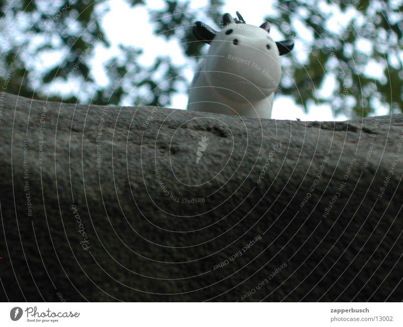 Gummi Kuh in der natur...