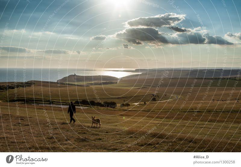 Spaziergang bis zum Horizont Mensch Hund Himmel Natur Ferien & Urlaub & Reisen blau Sommer Meer Einsamkeit Landschaft Tier Ferne gelb Wiese Wege & Pfade Küste