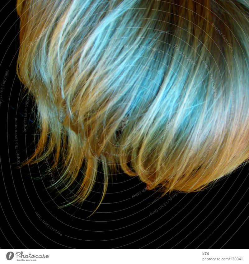 HAIR Mensch blau grün schwarz Kopf Haare & Frisuren Wellen blond glänzend Spitze Locken Friseur geschnitten Haarsträhne Kamm Beruf