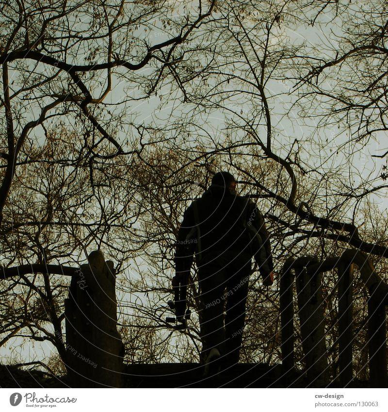 DER REISEFÜHRER VI Mensch Himmel Mann Natur alt Baum Sommer Wolken Landschaft Leben Herbst Wand Graffiti grau Wärme klein