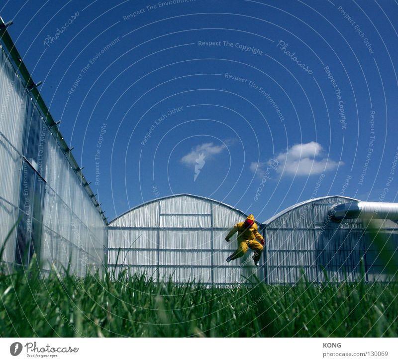 für gelb™ gehts aufwärts Himmel Freude gelb Wiese springen Gras grau Kunst laufen fliegen modern Maske vorwärts Anzug aufwärts Paradies