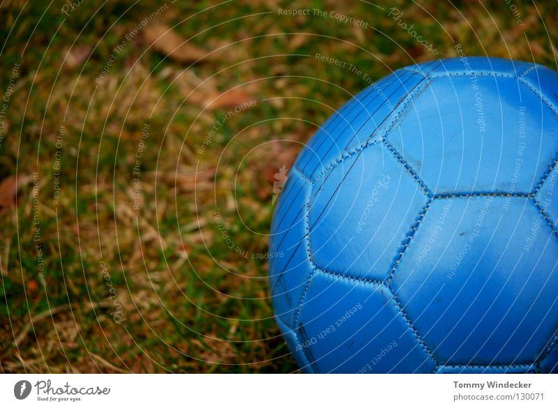 WM 2010 rund grün Wiese Sportrasen Spielfeld Sportgerät Freizeit & Hobby lederball Ball Kugel blau treten Detailaufnahme Schwache Tiefenschärfe Sechseck