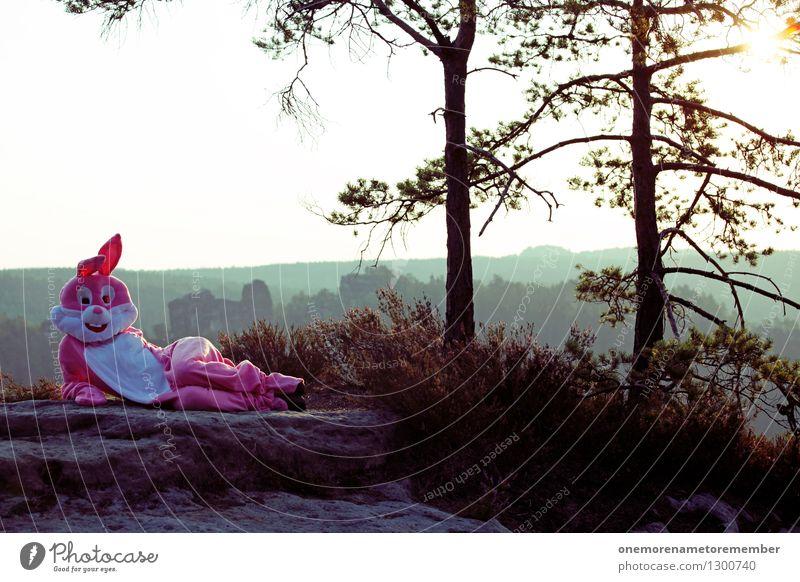 hey there Natur Freude außergewöhnlich Kunst Felsen rosa liegen verrückt ästhetisch Kreativität Körperhaltung Model Hase & Kaninchen Kunstwerk Kostüm Farbfleck