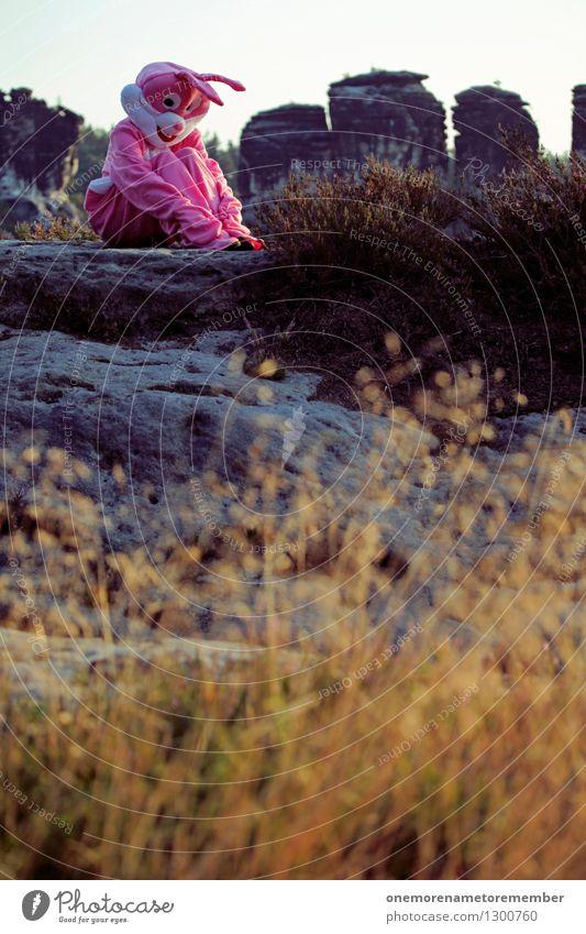 verzweifelt Kunst Felsen nachdenklich ästhetisch Pause Verzweiflung Hase & Kaninchen Kunstwerk Kostüm Karnevalskostüm verkleiden verkleidet Sächsische Schweiz