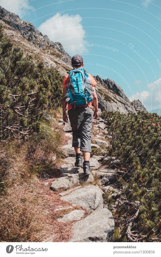Junge, der alleine in den Bergen wandert Lifestyle Ferien & Urlaub & Reisen Ausflug Abenteuer Freiheit Sommer Sommerurlaub Berge u. Gebirge wandern Junger Mann