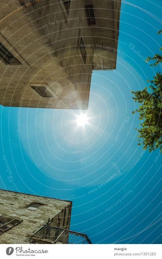 Sonne über Jerusalem I Himmel Ferien & Urlaub & Reisen Stadt blau Sommer Baum Haus Ferne Fenster Wand Architektur Gebäude Mauer Fassade Tourismus Ausflug
