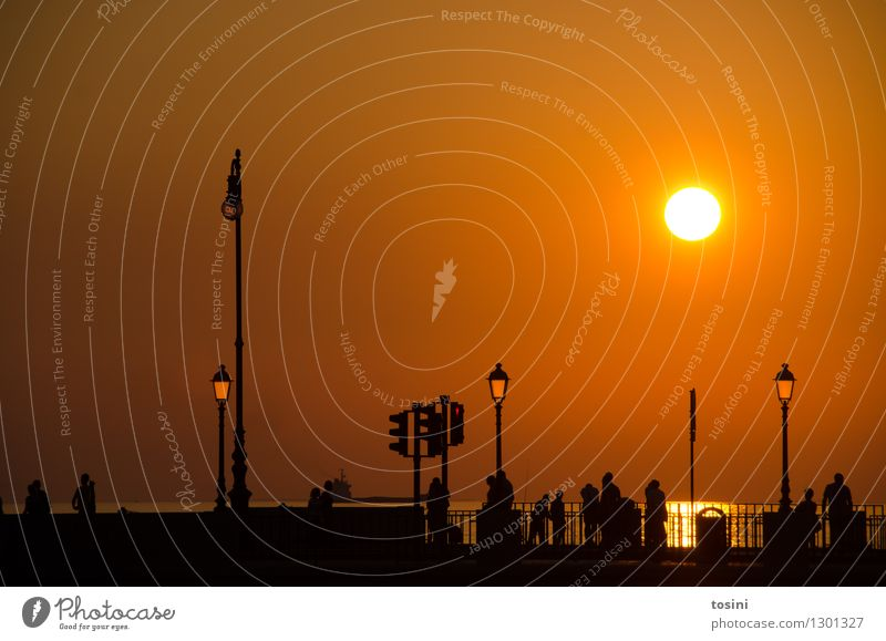 In der Dämmerung V Mensch Menschengruppe Wasser Sonne Sonnenaufgang Sonnenuntergang Sonnenlicht maritim Brücke Brückengeländer Straßenbeleuchtung Abenddämmerung