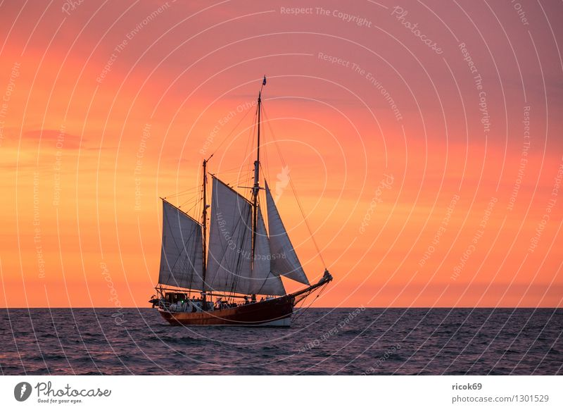 Segelschiff auf der Hanse Sail Erholung Ferien & Urlaub & Reisen Tourismus Segeln Wasser Wolken Ostsee Schifffahrt maritim gelb rot Romantik Idylle Tradition