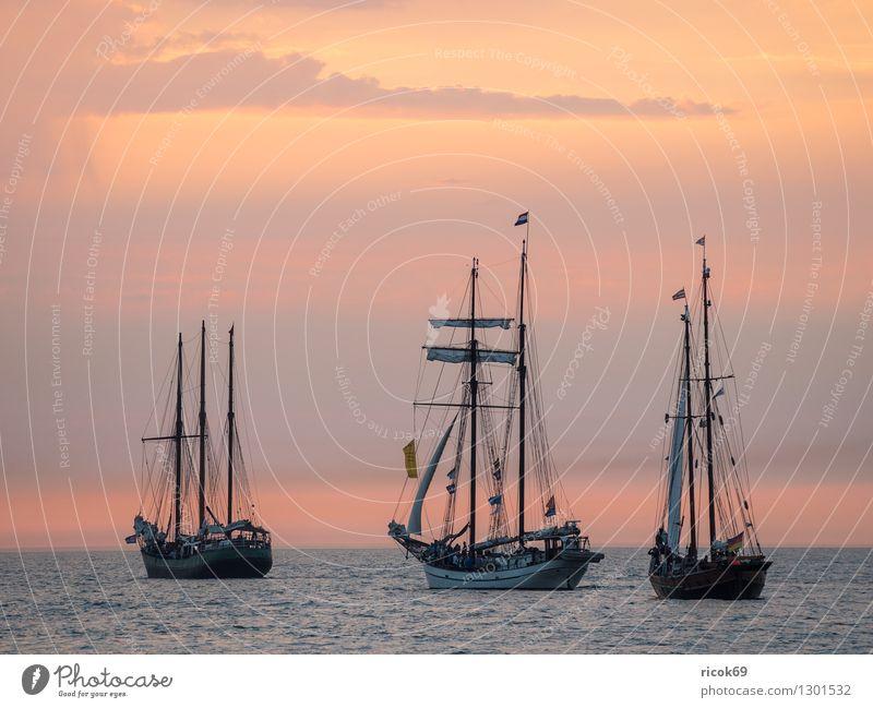Segelschiffe auf der Hanse Sail Erholung Ferien & Urlaub & Reisen Tourismus Segeln Wasser Wolken Ostsee Schifffahrt maritim gelb rot Romantik Idylle Natur