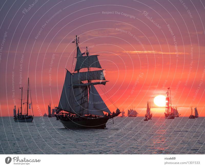 Segelschiffe auf der Hanse Sail Erholung Ferien & Urlaub & Reisen Tourismus Segeln Wasser Wolken Ostsee Schifffahrt maritim gelb rot Romantik Idylle Tradition