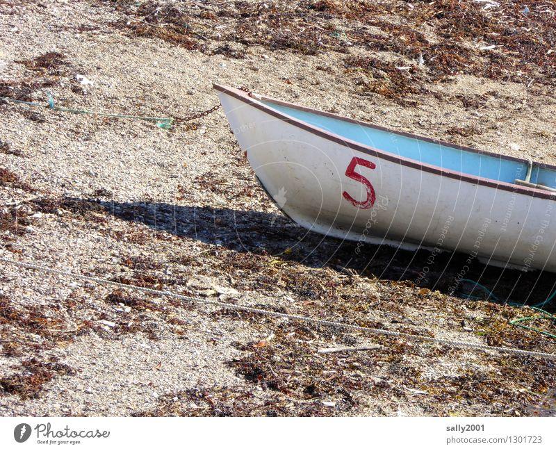 5 hat Pause... Strand Schifffahrt Bootsfahrt Ruderboot liegen alt einfach klein maritim trocken blau weiß Abenteuer Einsamkeit entdecken Erholung ruhig