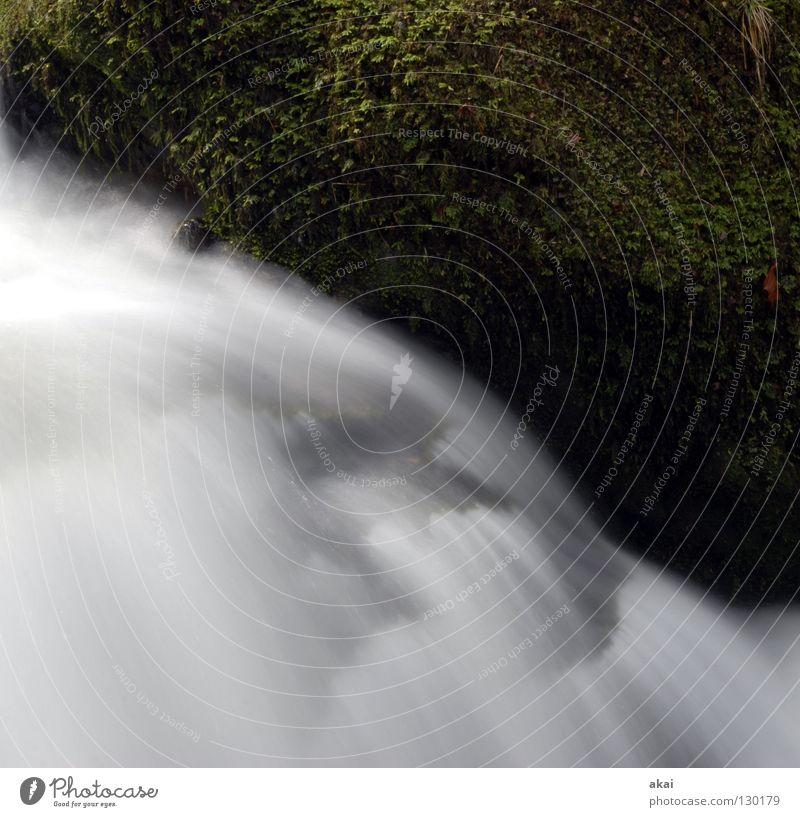 Wischi-Waschi Berge u. Gebirge Landschaft Wasser Bach Fluss Wasserfall kalt weich Wildbach Schwarzwald Schauinsland Mittelgebirge graufilter Langzeitbelichtung