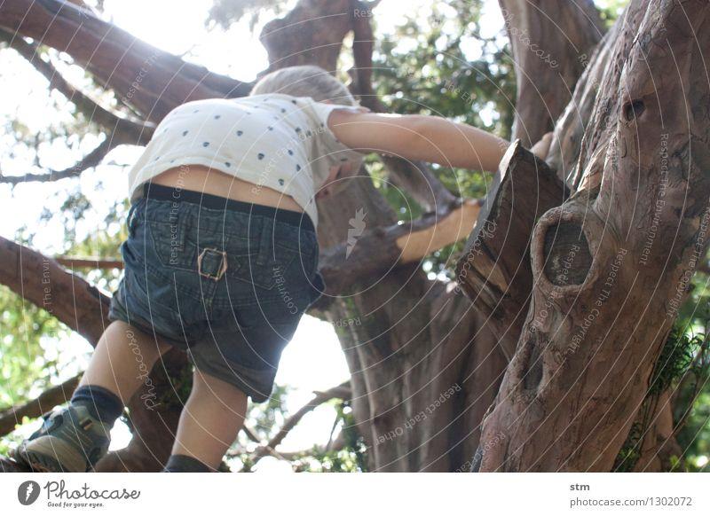 Naturspielplatz Mensch Kind Ferien & Urlaub & Reisen Sommer Baum Leben Junge Sport Spielen Glück Garten Park Freizeit & Hobby authentisch Kindheit