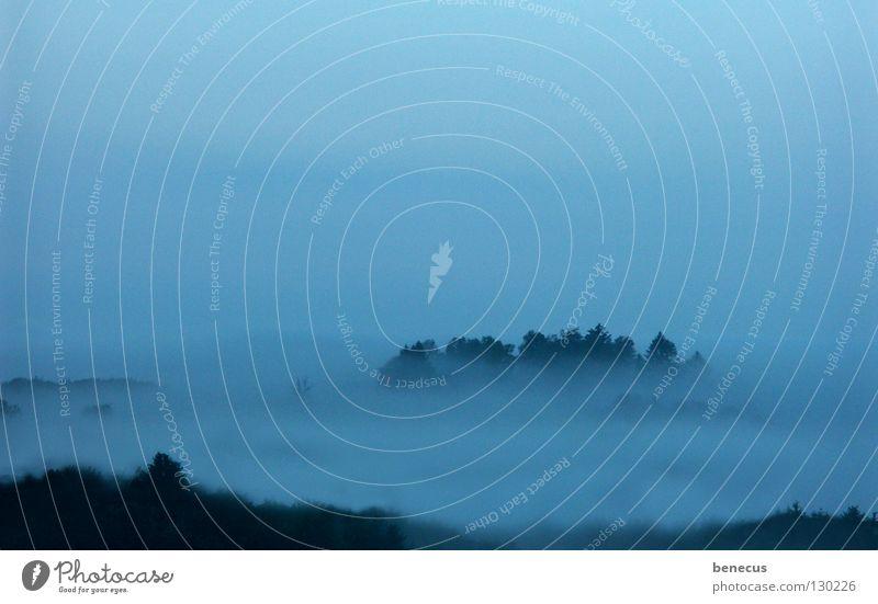 Insel Himmel Baum blau ruhig Wolken Wald dunkel grau Stimmung Nebel Hoffnung liegen leicht Island unklar