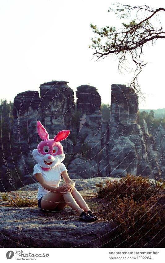 Felsenhase Natur Erotik feminin Kunst rosa ästhetisch süß Hase & Kaninchen Kunstwerk Sächsische Schweiz Heidekrautgewächse Hasenohren Hasenjagd