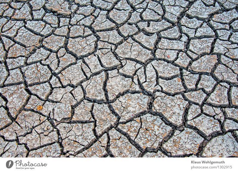 Mich dürstet Natur Sommer Landschaft schwarz Umwelt Wärme grau orange Feld Erde trist Klima bedrohlich Wandel & Veränderung Landwirtschaft eckig