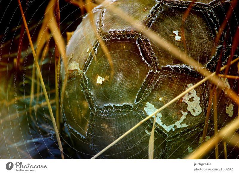 Verspielt Spielzeug verloren Gras Wiese kaputt Naht Sechseck trist Farbe Freizeit & Hobby Ball verstecken schäbig Fußball abblättern verwittert bewachsen alt