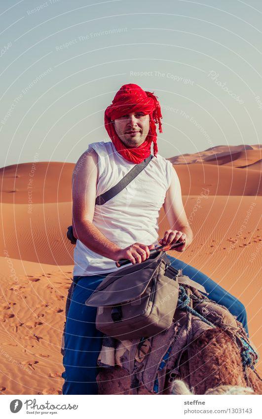 1500 ungeschönte Ansichten lustig Wüste Düne Jubiläum hässlich Kamel