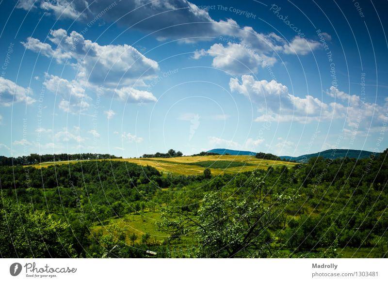 Eine schöne Aussicht Freiheit Sommer Natur Landschaft Himmel Wolken Horizont Baum Gras Wiese Wald Hügel Dorf frisch hell natürlich blau grün Stimmung Farbe
