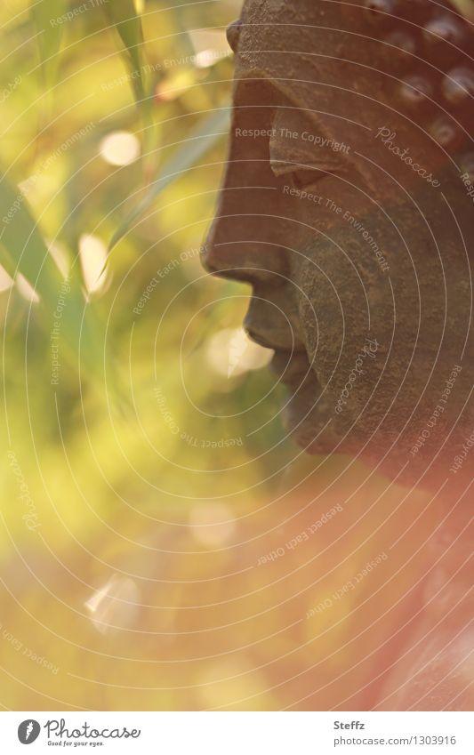 innere Ruhe harmonisch Erholung ruhig Meditation gelb grün orange achtsam Selbstbeherrschung Weisheit Glaube Lichtstimmung Religion & Glaube Vergänglichkeit