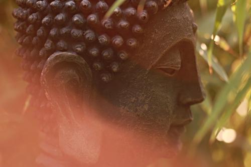 Buddha harmonisch Erholung ruhig Meditation Sommer schön braun orange achtsam Gelassenheit Weisheit Glaube Lichtstimmung Religion & Glaube Vergänglichkeit