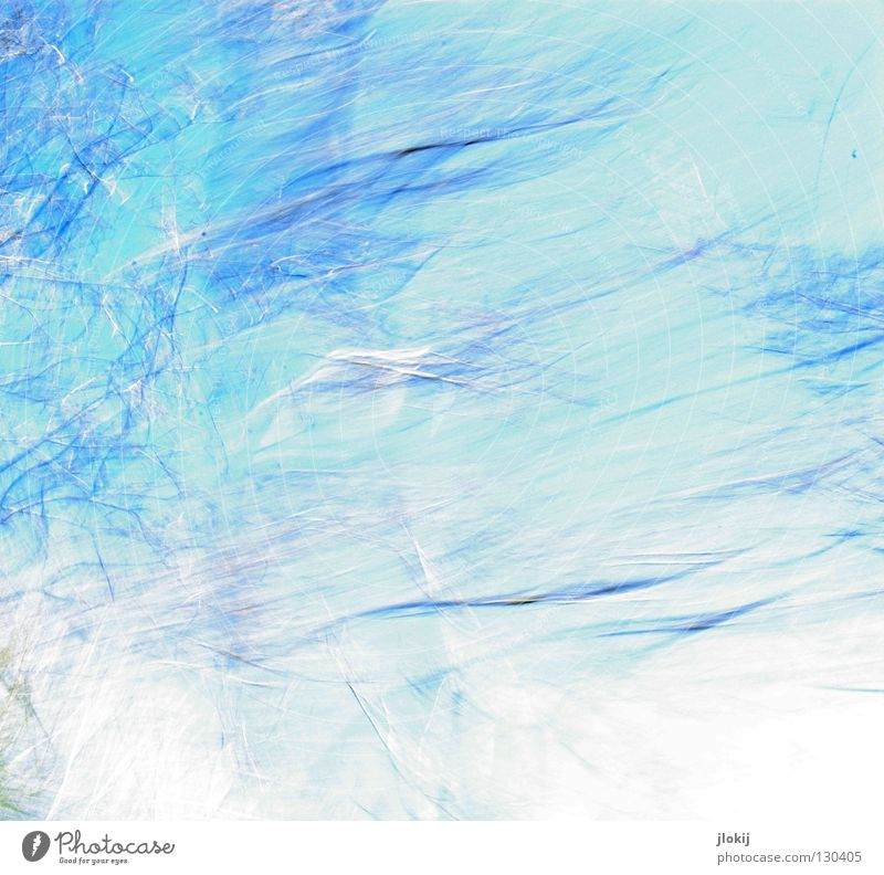 Lichtmalerei Himmel Natur blau grün Baum Pflanze Wolken Farbe Bewegung Horizont Geschwindigkeit fahren Ast Reihe Jahreszeiten Zweig