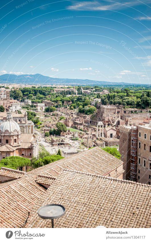 Rom V alt Tourismus ästhetisch Europa Italien Dach entdecken Hauptstadt Stadtzentrum Sehenswürdigkeit Altstadt Ruine maritim Bekanntheit Pinie