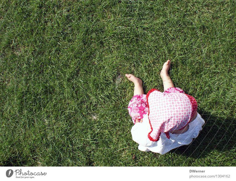 Rotkäppchen Mensch Kind Natur grün Sommer rot Mädchen Umwelt Wiese Gras Zufriedenheit Freizeit & Hobby frisch sitzen warten lernen