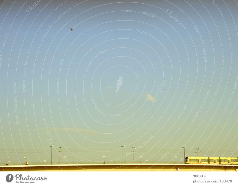 EISENSCHLANGE AUF DER JAGD Himmel alt Ferien & Urlaub & Reisen Freude Wolken Ferne Farbe Landschaft Freiheit Hund Lampe Deutschland Vogel gehen Ausflug offen